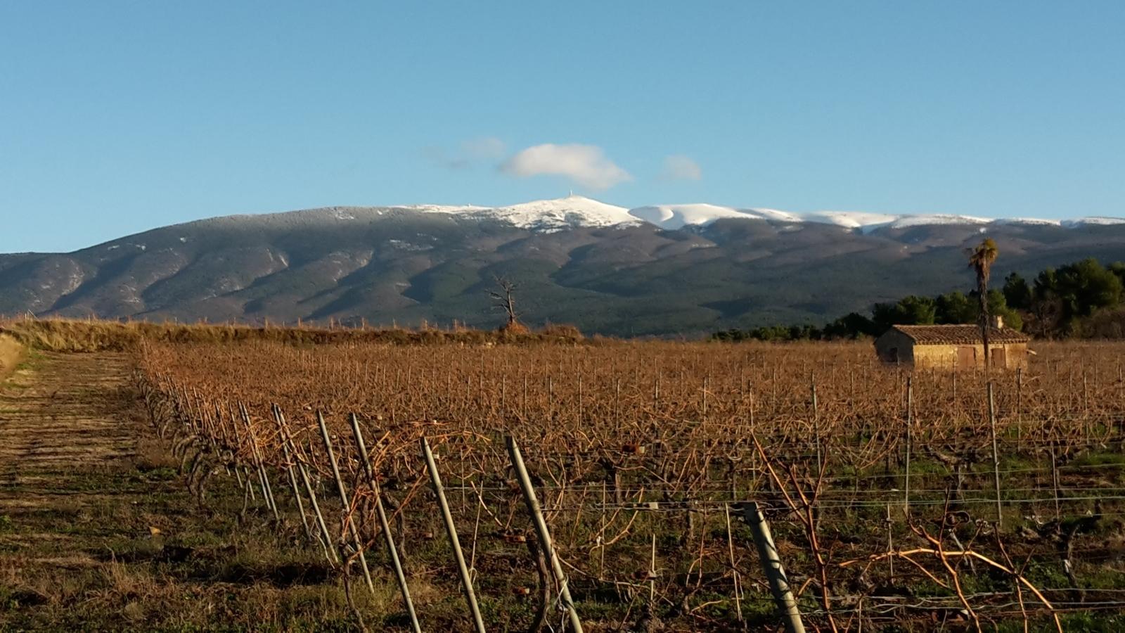 Ventoux-sous-la-neige-min-e1503051735146.jpg