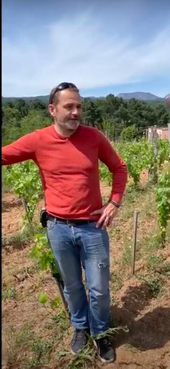 Read more about the article Tour dans les vignes des 7 Pierres avec François Tissot